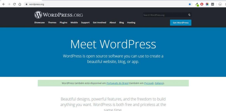 Como mexer na WordPress - Agência Next Step - Criação de Sites e Consultoria SEO
