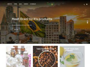 projeto-site-brazilian-tresor